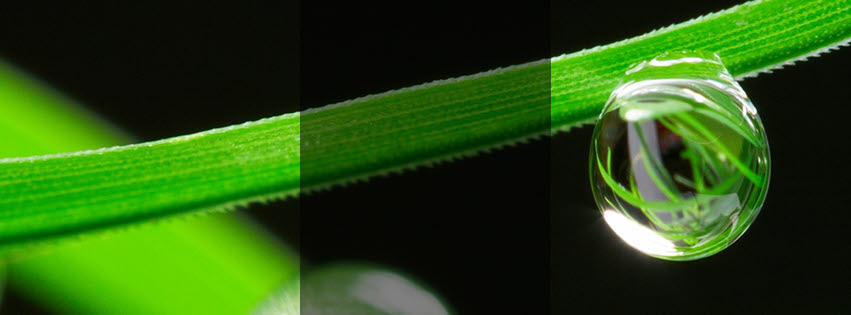 gota02-photoplus