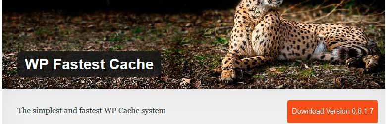 cache-wordpress06