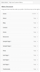 How-to-Create-Custom-Menu-Structures-in-WordPress-Creating-a-Menu-3